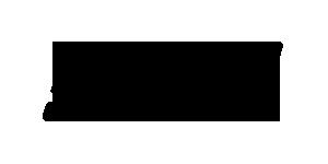 Steel Dynamics Inc. (SDI) logo - Mckee Horrigan Inc.